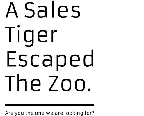 A-Sales-Tiger-Escaped-The-Zoo