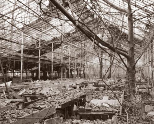 abandoned+greenhouse