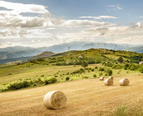 Wind farm in Basilicata – Italy