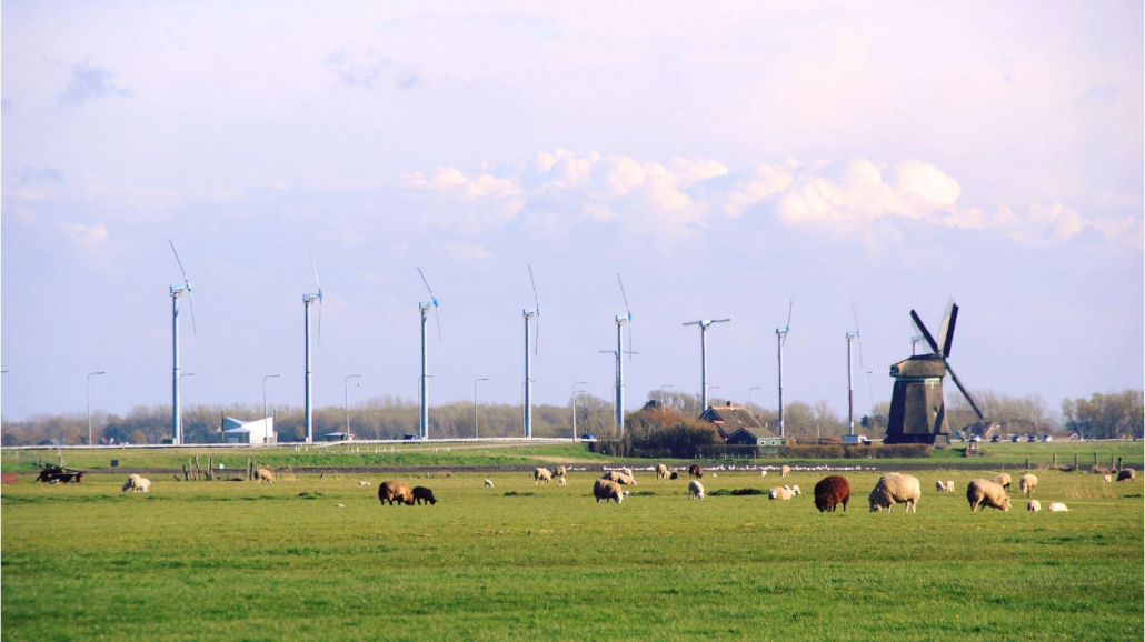 windpark zijpe