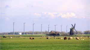 windpark zijpe